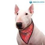 Cooling Pet Bandana Red Western