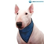 Cooling Pet Bandana Pacific Blue